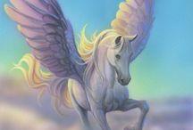 Pegasus♡Unicorn