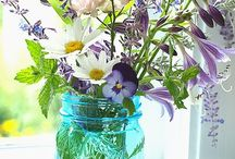 Flowers, gardens, treess