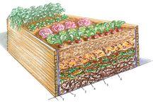 Garten / Gardening
