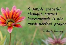 Flower Quotes and Images / Flower quotes, poems and images