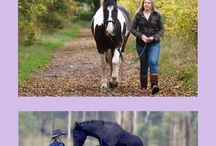 Horse Exercises & Training