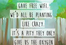 Quotes on Sustainability