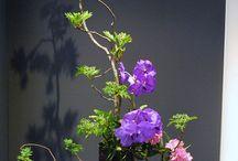 ikebanat