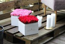 Red Roses Company / Kwiaty w pudełku