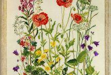 himzett virágok