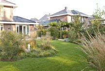 Grassentuin / Omarmd door groen en siergrassen is het goed toeven op het royale terras. De kronkelende grindpaden staan symbool voor de meanderende rivier en vormen de verbindende factor in het totale ontwerp. De kenmerkende rietkragen en het grasland komen in de tuin terug in de vorm van de royaal toegepaste siergrassen.  Deze tuin is aangelegd door: Mocking Hoveniers!