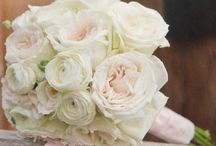 Wedding Flowers / by Ruthie K