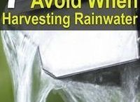 Harvesting Rain Water Tips