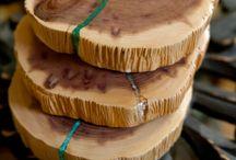 Troncos madeira