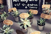 Wedding Inspiration / All things wedding inspired