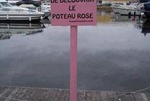 poteau rose