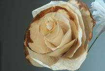 PETAL POWER - MAKING FLOWERS / Handmade paper flowers to decorate cards, tags, journal pages, altered books etc etc