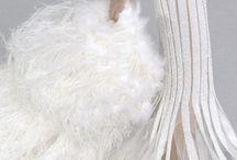 beyaz bird