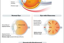 Ophthalmology / Ocular disorders in pets