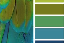 Color Pallets / Great color combinations for Photography