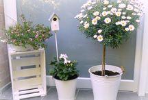 Haus   Garten   Dekoration   DIY