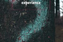 Airbnb Experiences