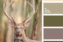 outdoor wedding (autumn colors) / by Kylee Hillman