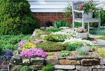 Raised bed in stone