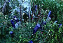 Gardening Ideas / http://remarc.com/craig/?p=425