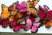 Butterflies. Peace. Dream Catchers. / by BRI CRUM