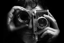 Lens Friends / Photography