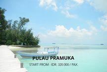 Wisata Pulau Pramuka / Pulau Pramuka merupakan salah satu pelopor Wisata Pulau Pramuka di Kepulauan Seribu. Di pulau ini terdapat sarana edukasi fauna yaitu pelestarian Penyu Sisik yang langka dan disini Anda dapat bermain serta berfoto dengan penyu. Selain itu Anda dapat melihat penangkaran ikan hiu yang eksotis dan anda dapat memberikan mkanan ikan kepada hiu tersebut. Yang tidak kalah menariknya ciri khas Pulau Pramuka terdapat bakau di tepi lautnya, serta keindahan panorama bawah laut.