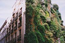 Lugares / by TuJardínOnLine - Diseño de jardines de bajo mantenimiento