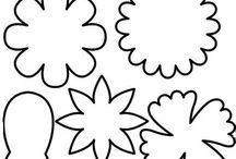 Alberi - fiori - foglie