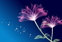 Flores / i like flowers