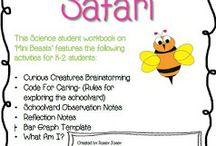 Schoolyard Safari Year 1 Science
