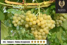 Palotás Pálinka - Szőlő ottonel muskotály / Ennek a testes muskotálypálinkának a szőlőfajtából adódó szelíd fűszerességében és tavasz virágait idéző zamatában rejlik vonzereje.
