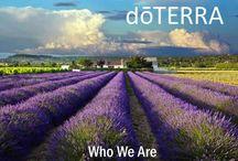 DoTerra / by Katie Delaplane