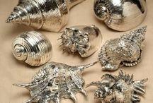 Морские раковины