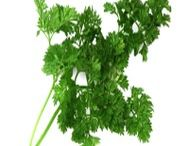 Descrizioni & Ricette / Tutta la descrizione e le ricette possibili con ogni nostro prodotto presente nel sito www.spezieria.com