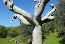 Gardino d'arte di Daniel Spoerri, Seggiano, Maremma, Toscana r