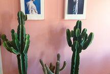 Vægfarve stue inspiration