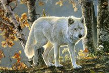 wolves / by Norma Hauf