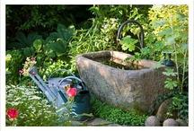 Garden Ideas / Garden ideas for your next outdoor renovation.