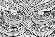 Owls - Colouring