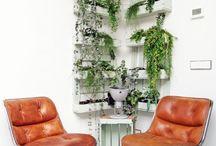 Planten Groen
