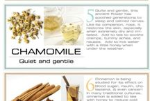 essential oils / by Rachael Smalt Engle