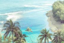 Canvas Art Hawaii