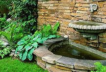 Ideas for Ponds & Water Treatments