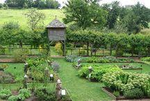 haszonkert (fruit and vegetable garden)