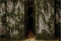 Le labyrinthe et divergente