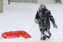 Snow storm Feb. 10 / by St. Cloud Times newspaper/online