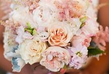Wedding Bouquets / Flowers