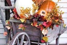 Fall Recipes & Decor! / Recipes & Decorations