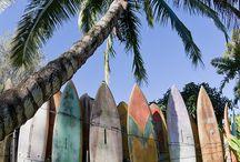 Beach,Sun,Surf / by Elaine Mote